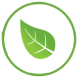 green-sustainability-programs-icon