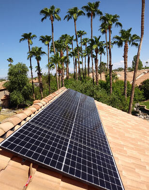 solar panels and palm trees