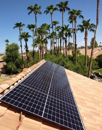 solar panels and palm trees svss
